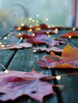 Златна есен в Персенк 5*, Девин